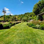 aménagement paysager gonsalves paysage jardin vert