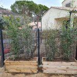 installation bacs pour bambous jardinières aménagement paysager gonsalves paysages