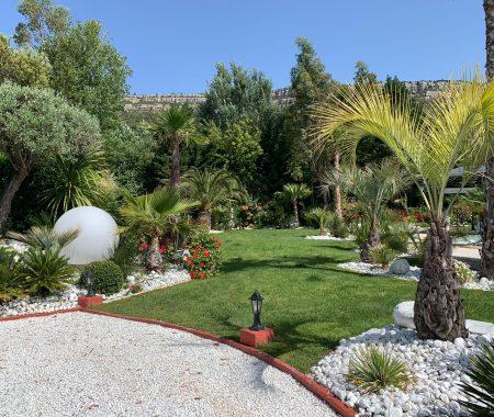 jardin gazon palmier et massifs de fleurs